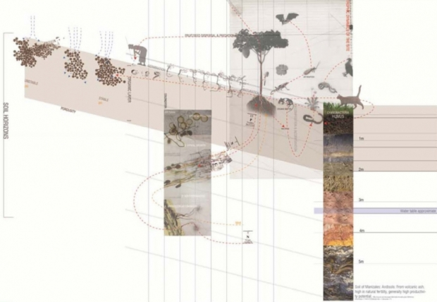temple architecture thesis students receive grants tyler