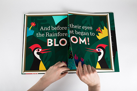 "Closed gate-fold of the book ""Bloom"""