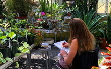 Photo of student drawing in a green house surrounded by a variety of plants.