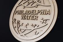 Lauren Hoover's winning medallion design