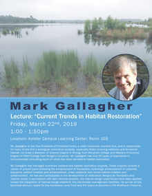 mark gallagher lecture information