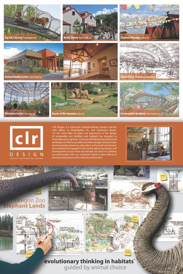 CLR design company advertisement