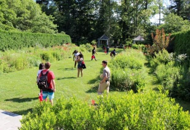 students walking in a formal garden