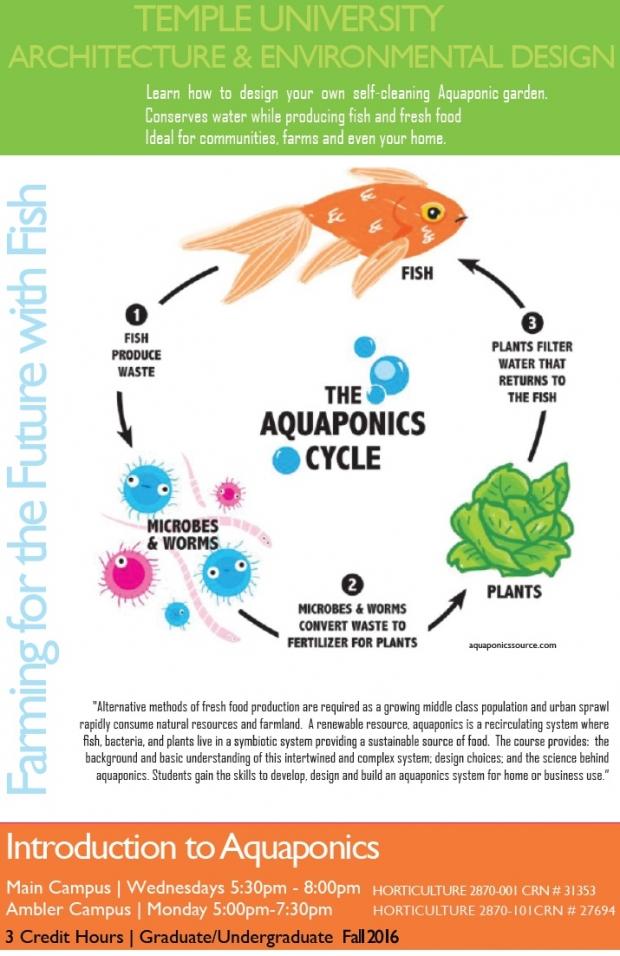 Aquaponics Course Advertisement