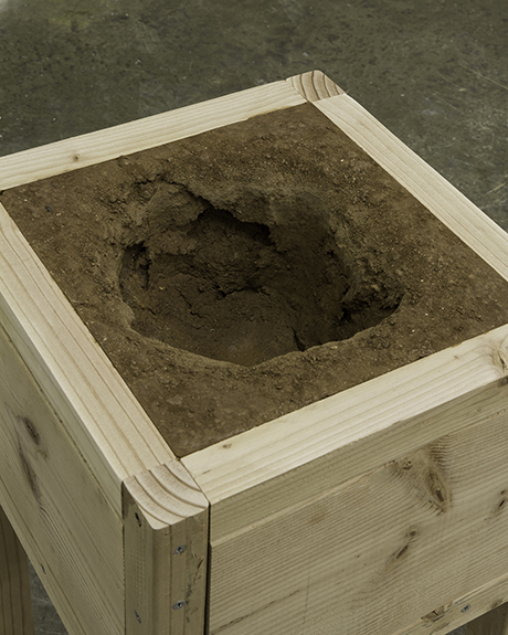 sinkhole contained in a wooden box